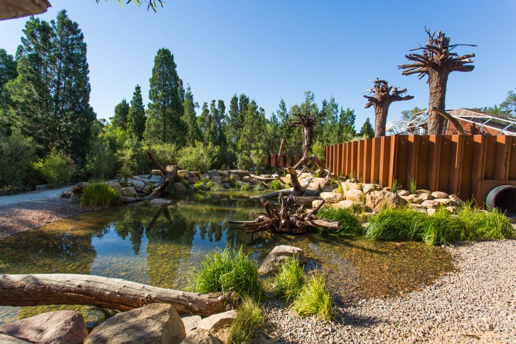 rio naturescape tinto expansion stage completed